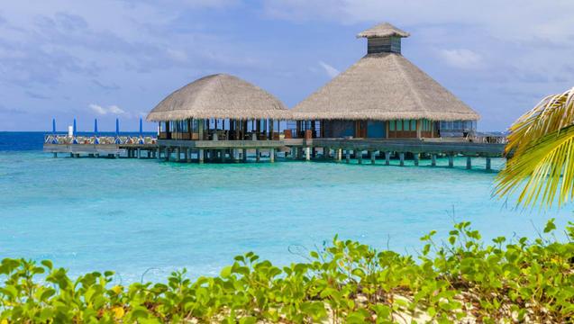 Malediwy wyspy atrakcje dla dzieci nurkowanie
