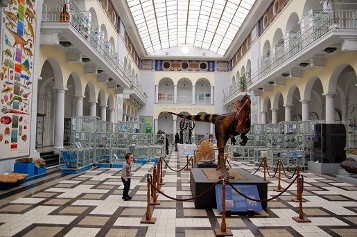muzeum geologiczne Warszawa atrakcje spacer z dzieckiem