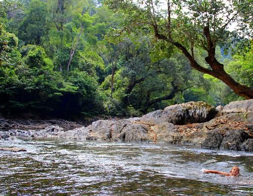 dżungli z dzieckiem- Borneo opinie wakacje