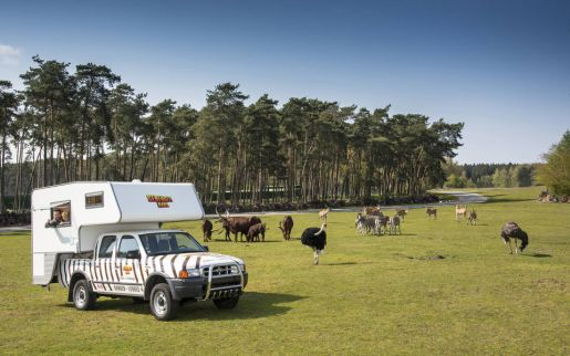 Niemcy Serengeti Park noclegi hotele Hodenhagen