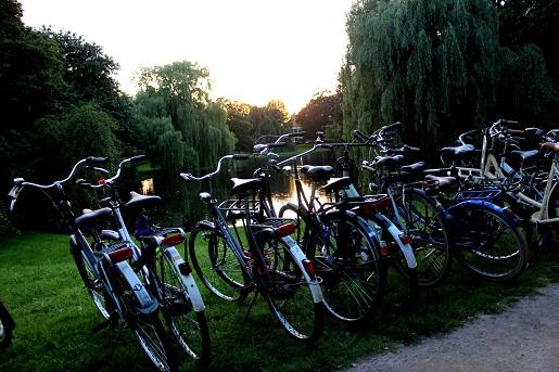 Groningen atrakcje dla dzieci Holandia