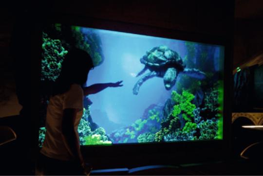atrakcje dla dzieci oceanarium Warszawa