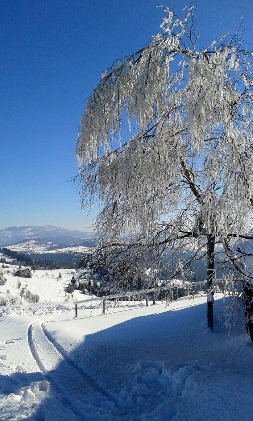 Beslid Śląski zimą rodzinne atrakcje