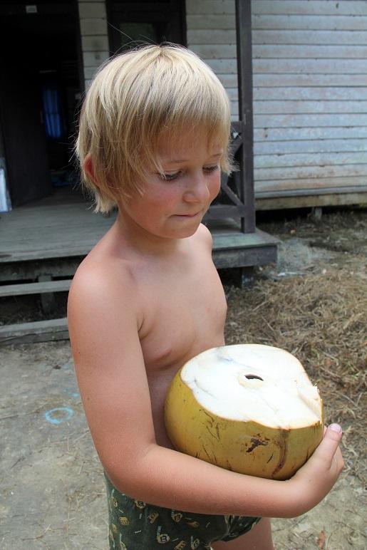 odkażanie, kokos (3)