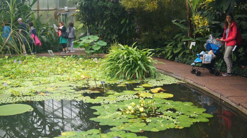 Royal Botanic Garden Edynburg wczasy z dzieckiem
