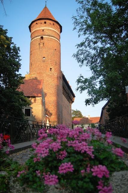 olsztyn wakacje z dzieckiem w Polsce