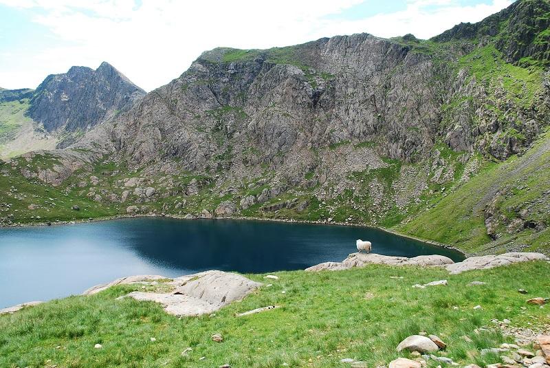 Snowdonia Walia w góry z dzieckiem opinie