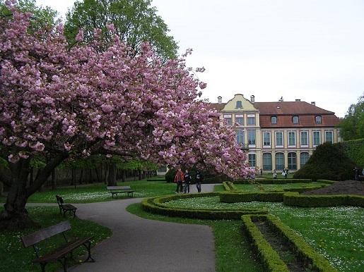 Park Oliwski Gdańsk z dzieckiem fot. Andrzej Otrębski