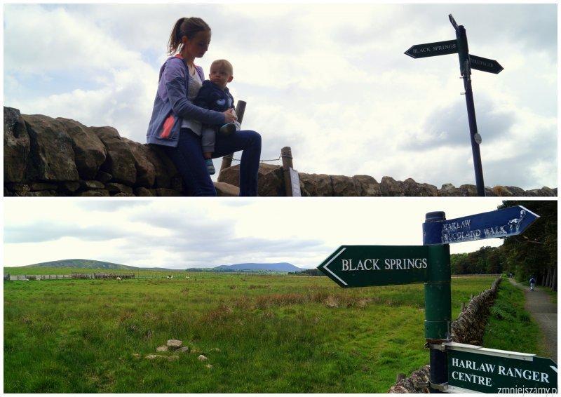 Edynburg Szkocja wakacje z dziećmi opinie