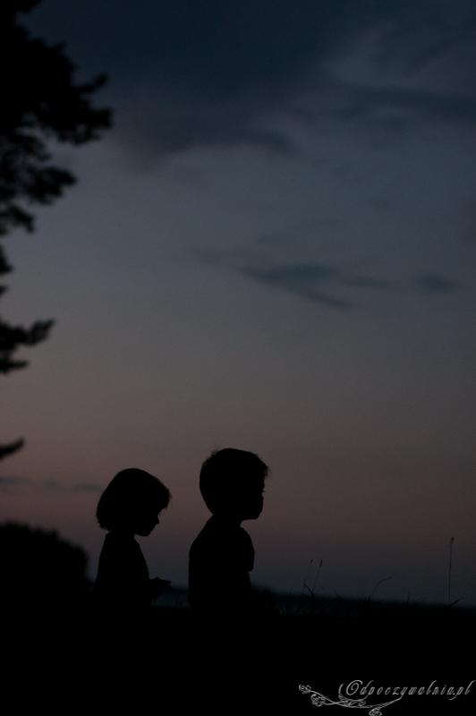 Podlasie z dziećmi atrakcje Puszcza Białowieska