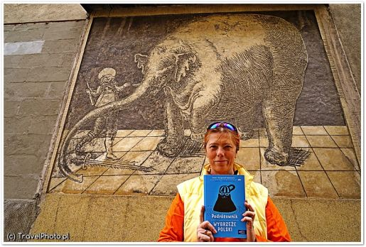 podróżowniki opinie ksiązki dla dzieci