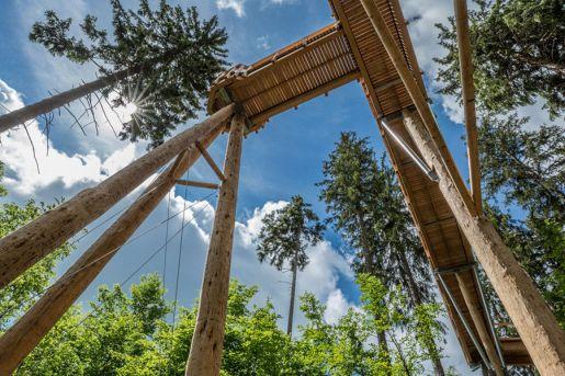 ścieżka w koronach drzew bachledka opinie
