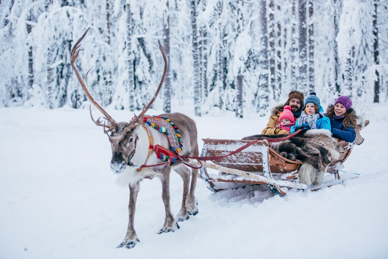 Rovaniemi arctic safari rodzinne atrakcje
