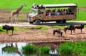 Serengeti Park atrakcje dla dzieci