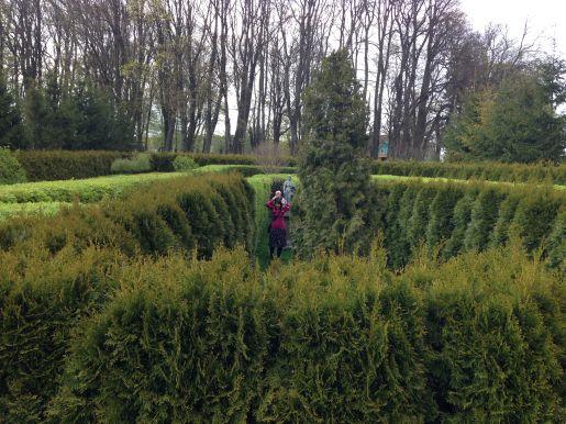 Sikorzyno dwór Wybickich labirynt ogrodowy opinie atrakcje