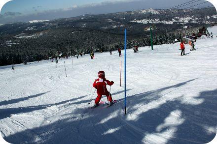 ski-arena-szrenica-szklarska-poreba-narty