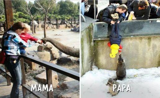 dzieci w zoo zabawne zdjęcia