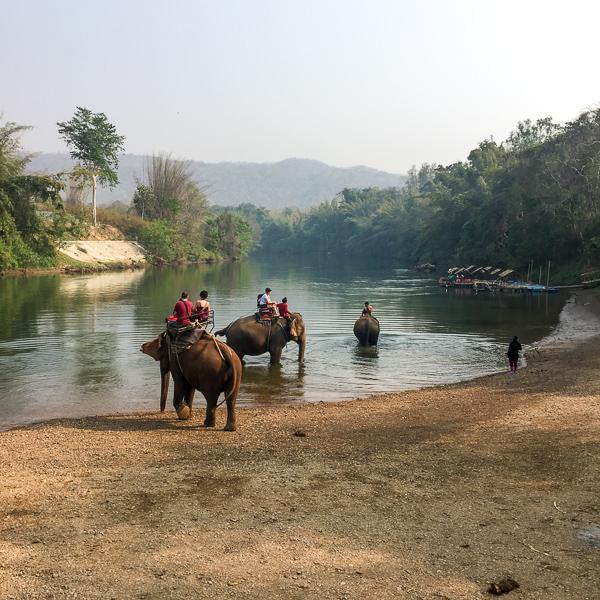 Sierociniec dla słoni Kanchanaburi Tajlandia opinie atrakcje