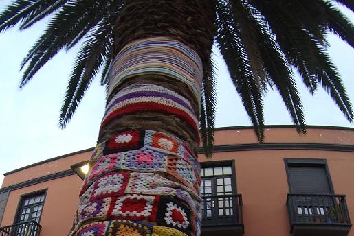 Palmy w Szaliku - Teneryfa - Puerto de la Cruz