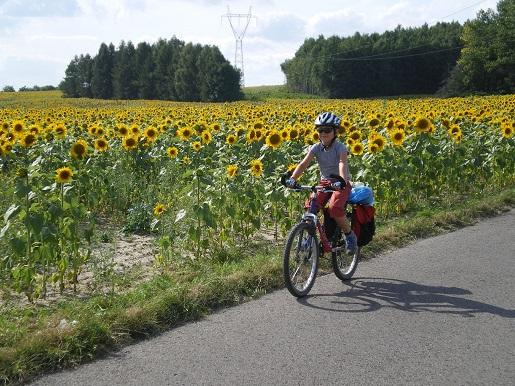 trasy rowerowe gps jura krakowsko częstochowska opinie