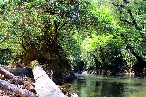 trekking (5)