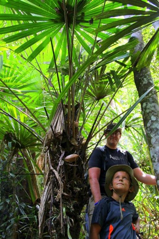 trekking Borneo wakacje rodzinne