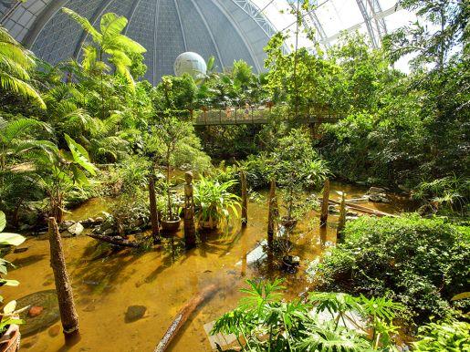 aquapark Tropikalna Wyspa Niemcy opinie