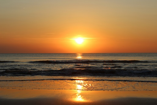 Verde Plaze Dania