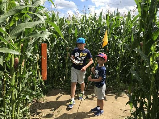 władysławowo labirynt w polu kukurydzy opinie ceny atrakcje (2)