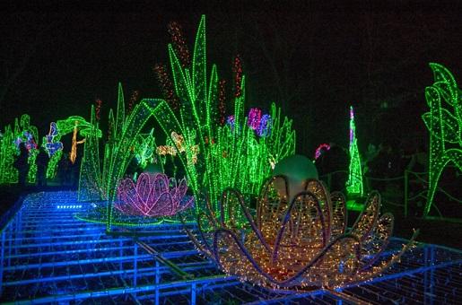 wilanów festiwal światła atrakcje Pałac