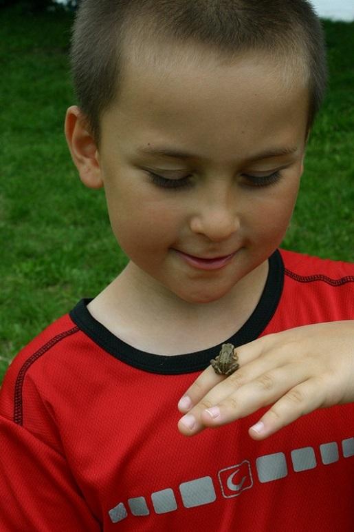zdjęcie nr 3 pojezierze drawskie z dzieckiem