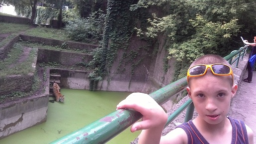 zoo łódź wakacje 2017 (1)
