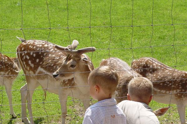 atrakcje dla dzieci Niemcy parki rozrywki