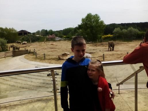 zoo-poznan-rodzinna-wycieczka-1 (3)