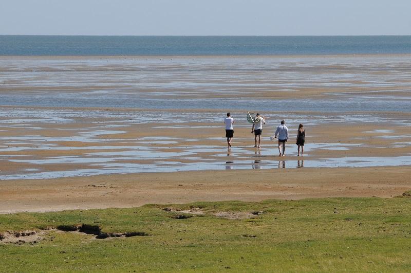 morze wattowe Dania okolice Ribe atrakcje co zobaczyć z dzieckiem