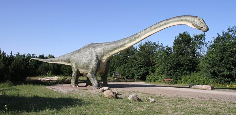 park dinozaurów zoo safari givskud atrakcje dla dzieci