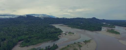 Amazonia - opinie