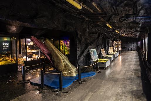 Bałtowski Kompleks Turystyczny atrakcje bilety ceny muzeum jurajskie