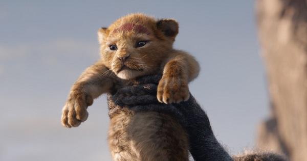 Bajka film Król Lew online 2019  (2)