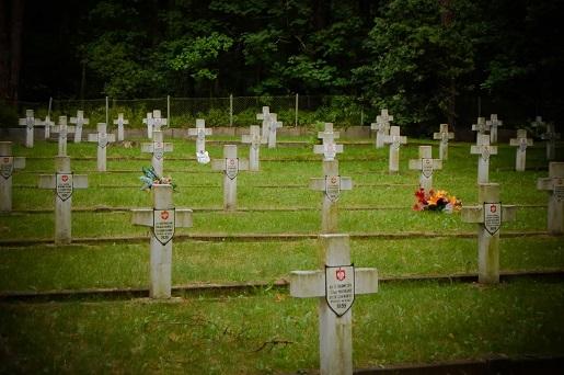 Granica cmentarz-Puszcza Kampinoska