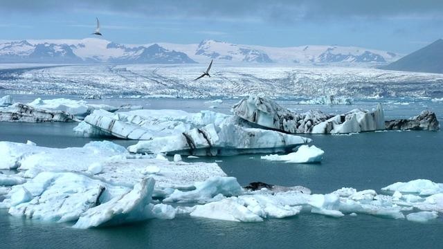 Islandia z dzieckiem najlepsze atrakcje gdzie jechac z dzieckiem co zobaczyc Laguna Jökulsárlón Fjallsárlón