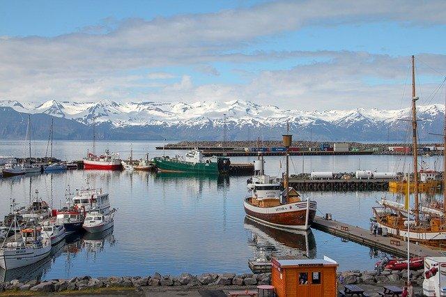 Islandia z dzieckiem najlepsze atrakcje gdzie jechac z dzieckiem co zobaczyc husavik Akureyri wieloryby rejsy
