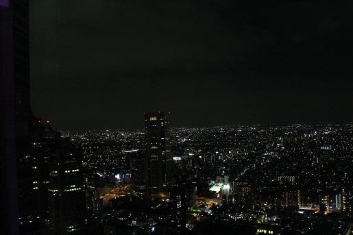 Japonia z dzieckiem opinie- zwiedzanie Tokio nocą