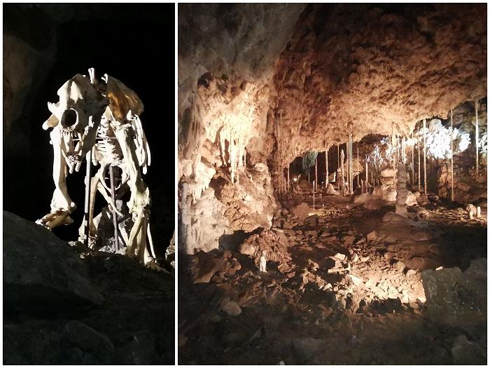 Jaskinia Katarzyńska Czechy zwiedzanie z dziekciem ceny opinie