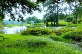 Leśny Park Kultury i Wypoczynku Myślęcinek w Bydgoszczy - opinie