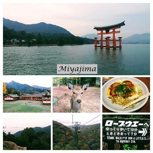 Miyajima Hiroszima co zobaczyć atrakcje Japonia