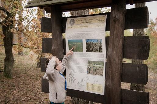 Muzeum Palmiry ścieżka dydaktyczna-Puszcza Kampinoska