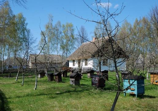 Muzeum Ziemi Mazowieckiej w Sierpcu czy warto atrakcje dla dzieci opinie