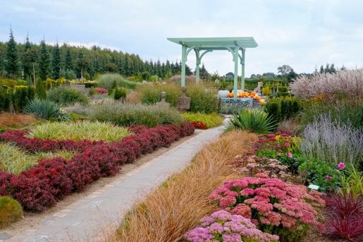 Ogród japoński Hortulus Dobrzyca atrakcje