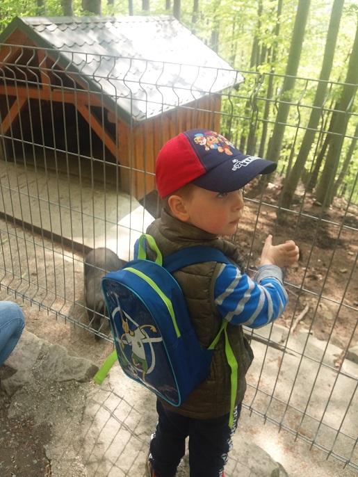 Ustroń rodzinne atrakcje dla dzieci leśny park opinie